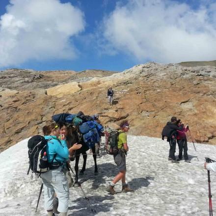 Col des Fours, Savoie, entre refuge de la Croix du Bohomme et Refuge des Mottets Tour du Mont Blanc_