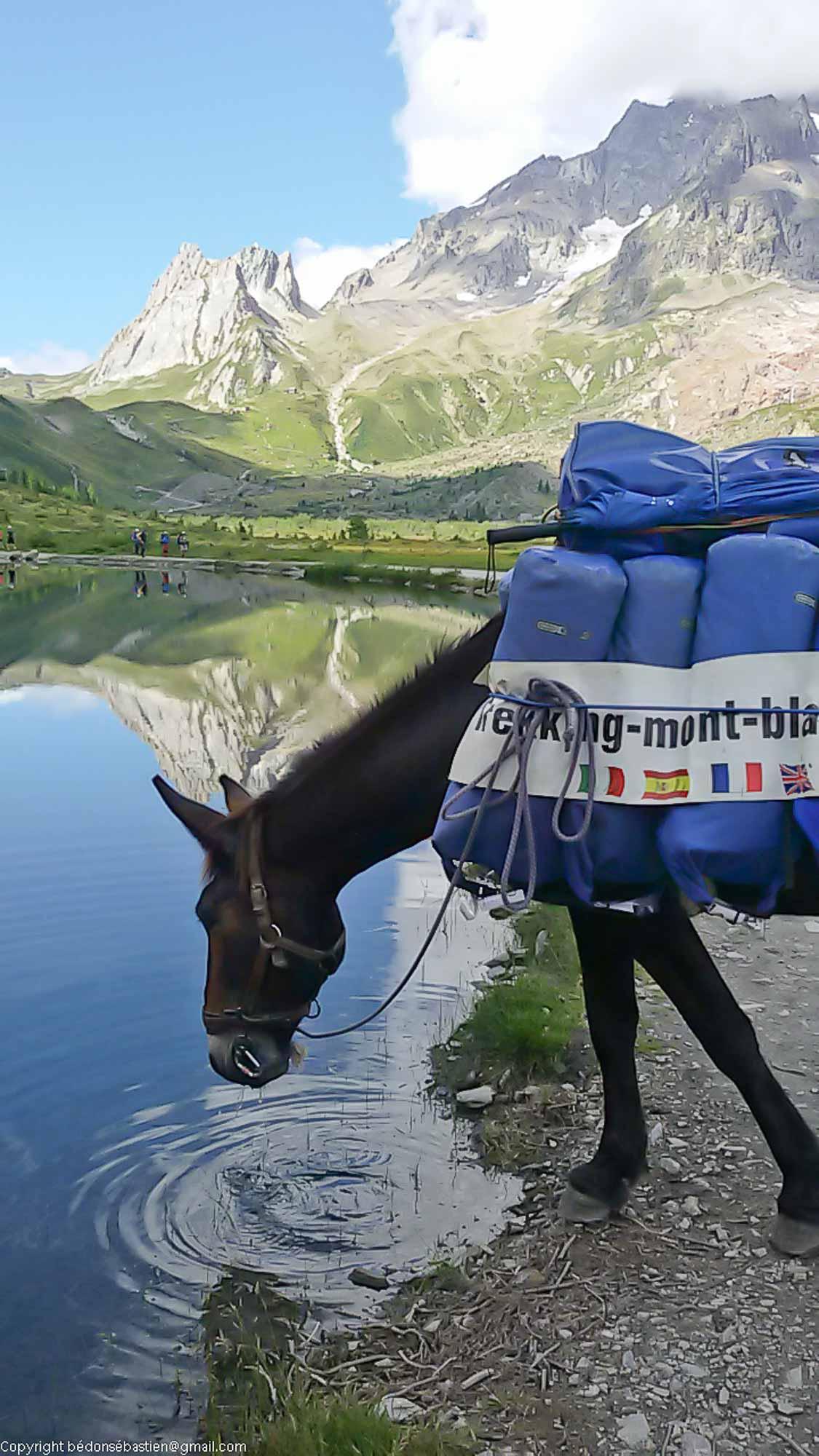 tour du Mont Blanc Lac Combal Val Veny, Italie