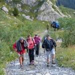 Tour du mont Blanc Nord - 7 jours - Col grand ferret