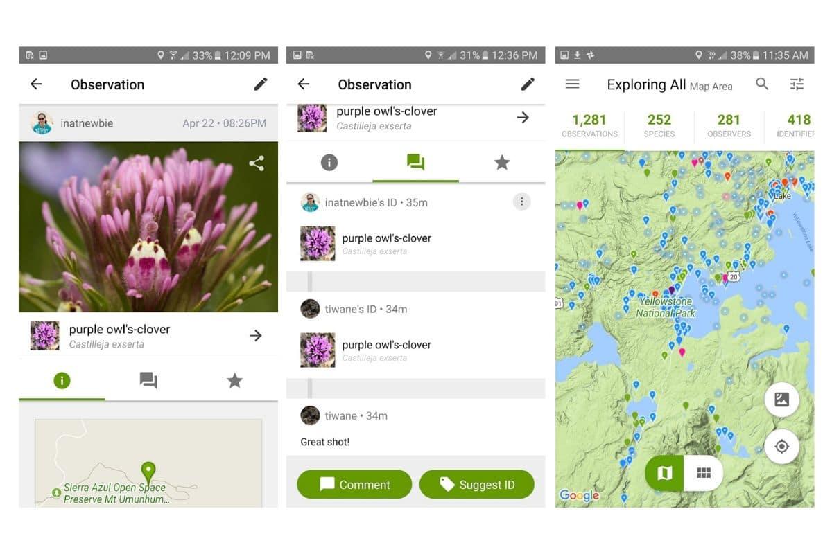 iNaturalist - application de randonnée de reconnaissances plantes et animaux